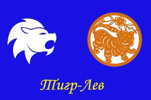 Лев тигр мужчина