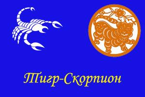 Скорпион-Тигр