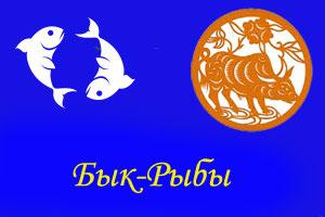 Бык-Рыба