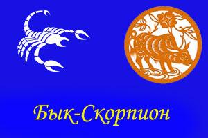 Скорпион - Бык
