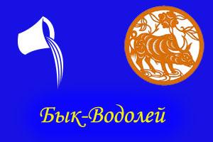Водолей - Бык