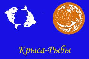 рыбы крыса