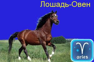 lo_ovn