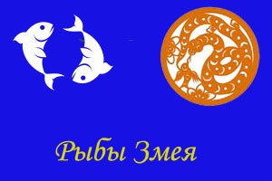 змея гороскоп рыбы