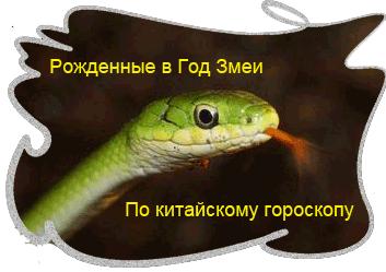 zmeya1