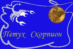 термобелья, изготовленная знак задиака скарпион про нево всё информация подобранное